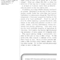 /files/conapo/lebanon_villages_without_women.pdf